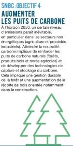 Objectif 4 de la stratégie nationale bas-carbone : augmenter les puis de carbone